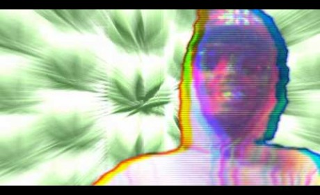 Video: Darq E Freaker ft. Danny Brown ~ Blueberry {Pelican Fly Allstars Remix}