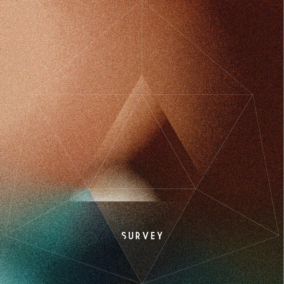 survey2 Survey Away/Delirium interview
